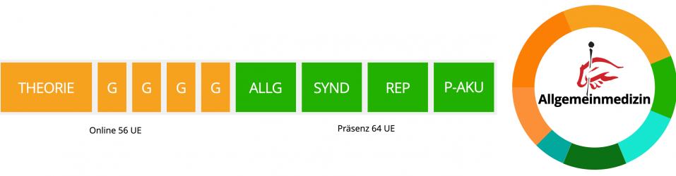 schritte-zum-zertifikat-der-forschungsgruppe-akupunktur-fuer-allgemeinmediziner
